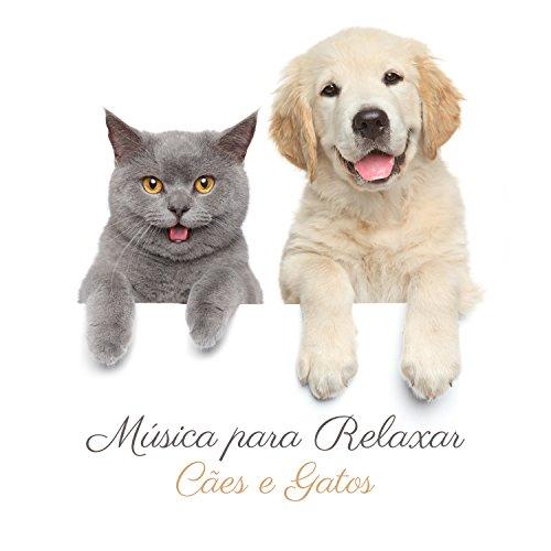 Música para Relaxar Cães e Gatos: Animais de Estimação Tranquilos, Cães Adormecidos, Terapia