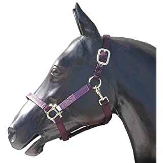Kensington KPP Halter Set with Padded Nose, Plum with Plum Ice Plaid, Small