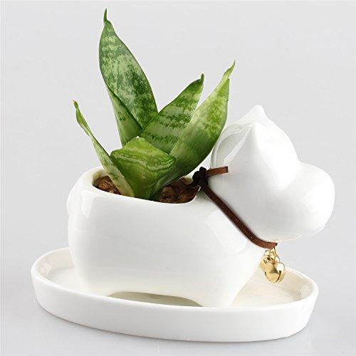 kawaii-animal-vaso-per-piante-grasse-a-forma-di-ippopotamo-in-ceramica-con-sottovaso-vaso-per-fiori-