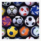 Timeless Treasures Fußball Stoffe-Fußbälle