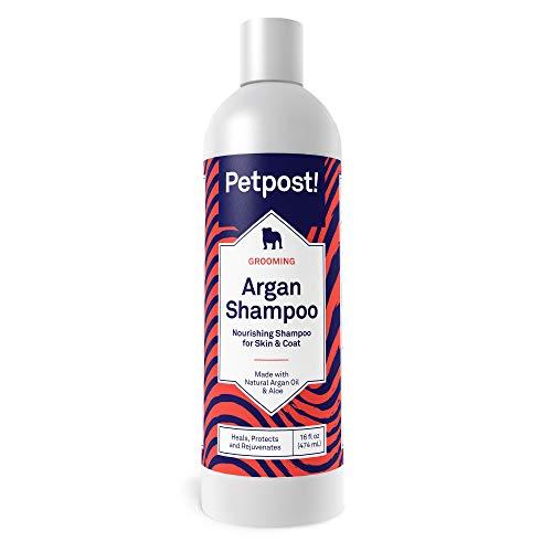 Petpost | Argan Shampoo für Hunde - Heilt, schützt und regeneriert trockene Hundehaut & Fell natürlich - Arganöl und Aloe Formel (474 mL) (Formel Shampoo Natürliche)