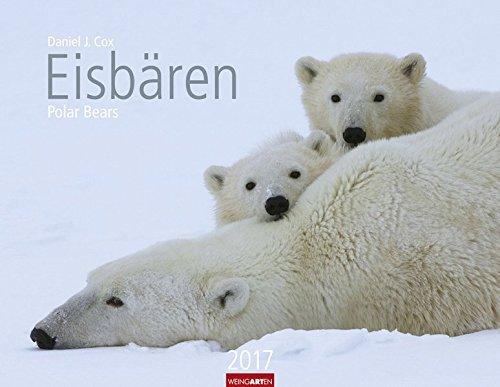 Eis Angeln Kalender (Eisbären - Kalender 2017)