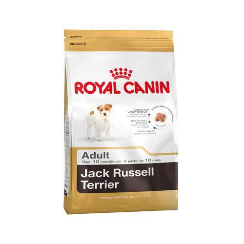 ROYAL CANIN/Jack Russel Terrier Adult Sac de 7,5 kg Croquettes pour chien Jack Russel à partir de 10 mois
