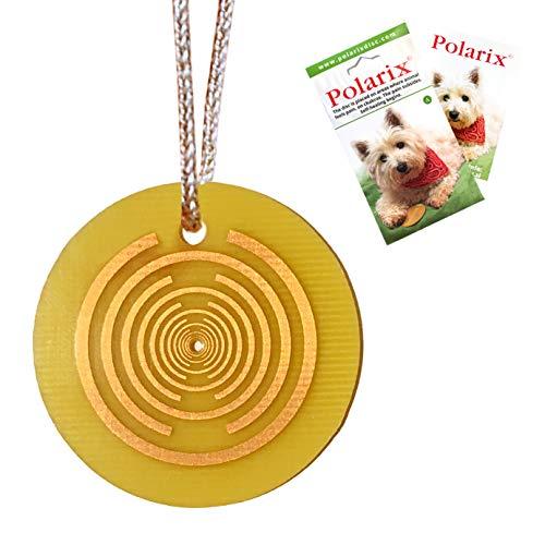 Polarix© für Tiere-Schmerzlinderung   Ergänzungsmedizin für Hunde   Sofortige natürliche Heilung für Hunde Katzen Pferde & Haustiere   Chakra Healing Disc ist kein Hundespielzeug,kann aber   fi 36 mm