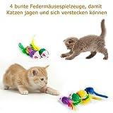 AILUKI 26 Stück Katzenspielzeug Set mit Katzentunnel Katzen Spielzeug Variety Pack für Kitty - 3