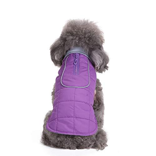 Amphia - Hund Weihnachten,Haustier Hund Reißverschluss Jacke Mantel Kleidung - Haustier Hund Katze Welpen Winter warme Kleidung Kostüm Jacke Mantel Kleid(Lila,XL) (Die Katze Im Hut Weibliche Kostüm)