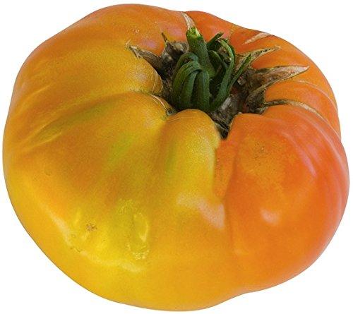 Lot de 10 Graines Tomates géante Jaunes - Taille : 40 à 60 CM semence