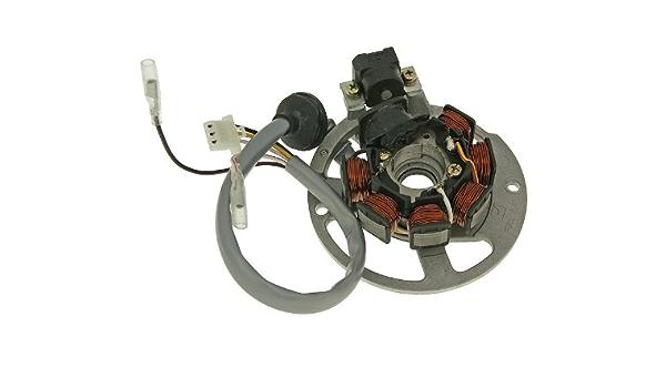 Lichtmaschine Stator Naraku Für Yamaha Aerox 50 99 03 Auto