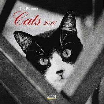 Cats 2010. Broschürenkalender