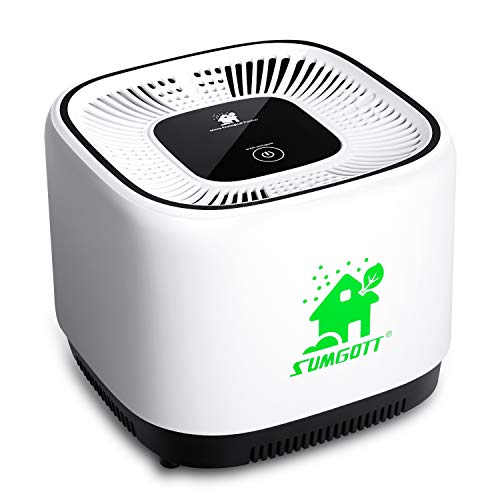 Purificateur D'air Anion avec à ...