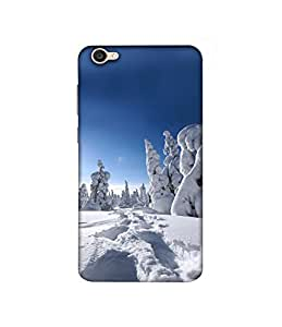 Casotec Winter In Finnland Design 3D Printed Hard Back Case Cover for Vivo V5