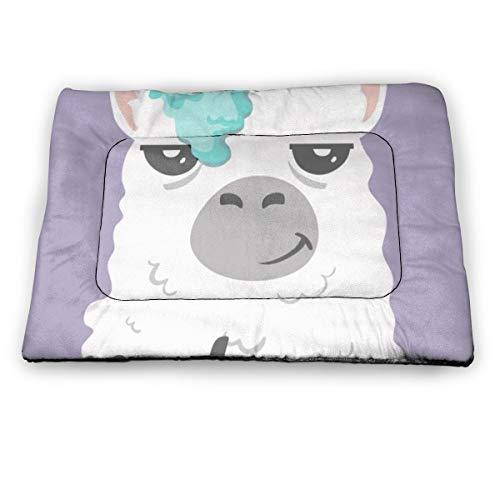 Sggual Lama Alpaca Withunique Lettering Quote Dog Bed Crate Mat Lavable Antideslizante Kennel Pad para Perros y Gatos pequeños