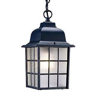 Acclaim 5306BK Nautica Collection 1-Light Outdoor Light Fixture Hanging Lantern, Matte Black by Acclaim