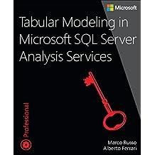 Tabular Modeling in Microsoft SQL Server Analysis Services: Developer Reference (Developer Reference (Paperback))