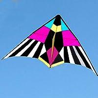 FZSWD El Material de la Cometa de los pájaros del Poder del paño del Paraguas de