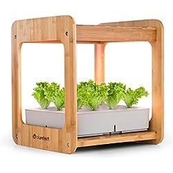blumfeldt Urban Bamboo • Indoor Garden • Pflanzsystem • Hydroponisch • automatische Beleuchtung mit 24W LED • integrierte Umwälzpumpe • 7L Wassertank • echter Bambus • 12 Pflanzen • Zimmergewächshaus
