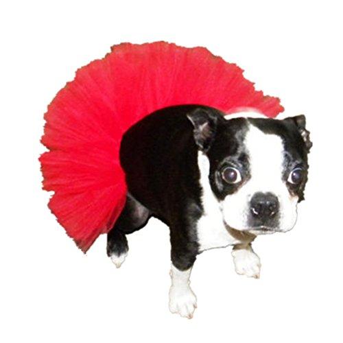 Kostüm Rote Pudel Rock - WangsCanis Haustier Hund Gaze Rock Tutu Halloween Party Kostüm Kleid Outfit Katze Prinzessin Kleiner Kleidung (Rot)