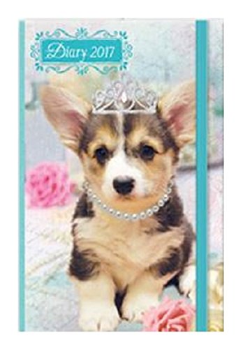 2017-chunky-a6-diary-day-per-page-to-view-puppies-kittens-christmas-birthday-gift-cats-dogs-hardback