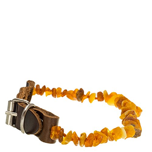 dog-collar-anti-tick-flea-tick-protection-for-dogs-untreated-natural-baltic-amber-necklace-collar-le