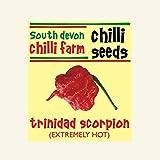 4 x SDCF Trinidad Scorpion Moruga Seeds