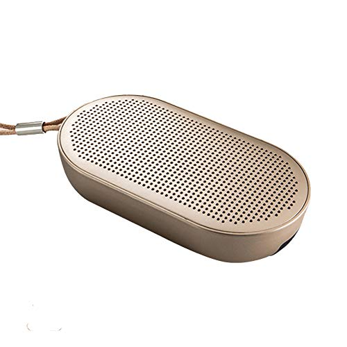 PLAIPH Bluetooth Lautsprecher, Waterproof Bluetooth Speaker Dual Voice Coil Strong Magnetic Speaker Plus Bass Membran Private Mode Wireless Outdoor Audio, Around Home Office und Outdoor Party Stereo Dual Voice Coil Speaker