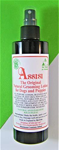 Assisi - Loción natural para perro de lino y rasguño. Para perros y cachorros. Natural Safe tratamiento eficaz no tóxico. Botella de spray de 260 ml.
