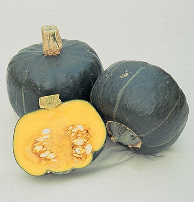 Heirloom NON OGM Courge musquée 15 graines