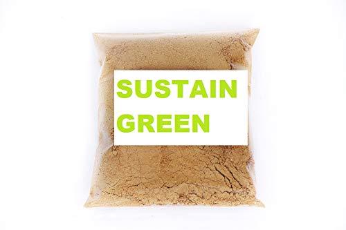 Sustain Green Natural Dishwash Ceaning Powder - 2 Kg