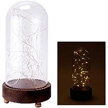 Campana de cristal (lámpara de mesa Luz Cadena Navidad iluminación con 40luces LED alto