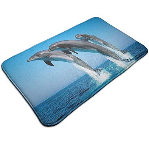 sghshsgh rutschfeste Fußmatte Bodenmatte Anti-Slip Washable Bathroom Mat Absorbent Quick-Drying Doormat Suit for Indoor/Outdoor/Frontdoor/Bedroom/Livingroom/Diningroom Dolphin Jump