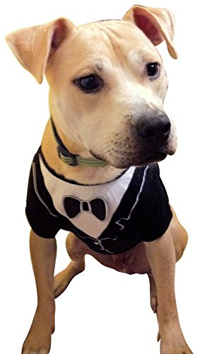 Dog Tuxedo (Extra small- Length (back) 22.8 cm), by Frenchie Mini Couture