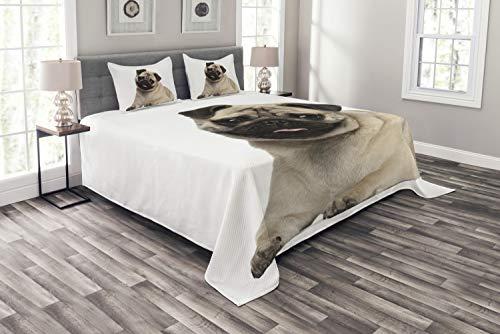 ABAKUHAUS Mops Tagesdecke Set, Junge Welpen auf dem Boden liegend, Set mit Kissenbezügen Waschbar, für Doppelbetten 264 x 220 cm, Hellbraune schwarz