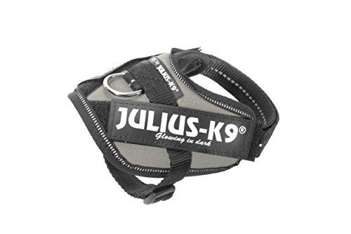 Julius K9 16IDC-SIL-B1, IDC-Powergeschirr, Größe: Baby 1, Silber Preisvergleich