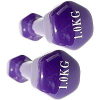 Mancuernas con revestimiento de vinilo (2 unidades) – 0.5 Kg a 6 kg Gimnasio En Casa Fitness ejercicio Biceps entrenamiento con peso 0,5 kg, 1 kg, 2 kg, ...