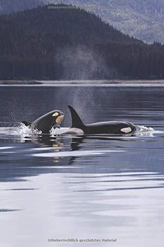 Delfine Erwachsenen T-shirt (Notizbuch mit Orka Wal Bild: orca Notizbuch / Tagebuch mit 120 Seiten a5 mit Punkten, softcover)