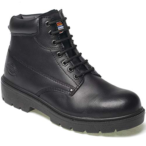 Dickies Mens Antrim Safety Boot Shoes Steel Toe Cap & Steel Midsole Work Branded Lightweight Footwear Oil & Slip Resistant FA23333 BLACK SIZE UK 6 by Dickies Black Steel Toe Work Boot