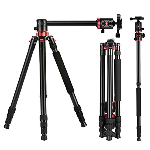ZOMEi M8 Professionelle Aluminium Legierungs-Stative und Einbeinstativ mit 360 Grad Panorama Kugelkopf für Canon Sony Nikon DSLR Kameras