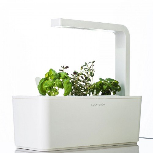 Click & Grow Smart Herb Garden kit with 3 Basil Cartridges, White Lid