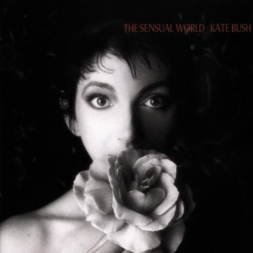 the-sensual-world