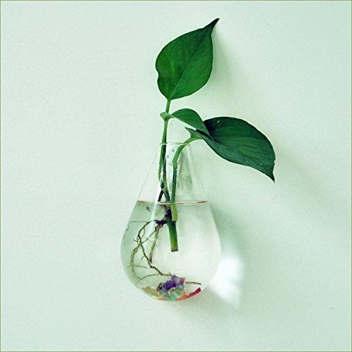 maceta-para-flores-planta-colgante-de-pared-botella-de-vidrio-agua-forma-de-gota-decoracion-casa