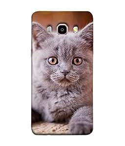 PrintVisa Designer Back Case Cover for Samsung Galaxy On8 Sm-J710Fn/Df (Portrait Tricolor Outdoor Summer Sitting Animal Beautiful Kitten)