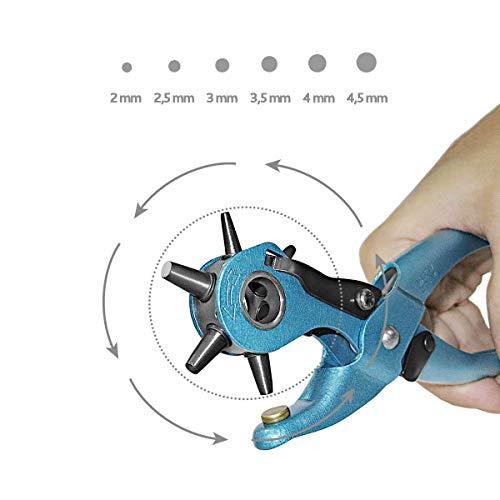 S&R Alicate Sacabocados para Cinturones y Cuero. MADE IN GERMANY,  con 6 puntas intercambiables de 2 – 2, 5 – 3 – 3, 5 – 4 – 45 mm