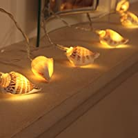 Sea Shell Fairy Lights - Battery Operated - 10 Warm White LEDs - Real Shells - Timer by Festive Lights