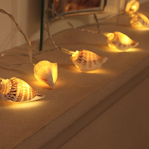 sea-shell-fairy-lights-battery-powered-10-warm-white-leds-real-shells-by-festive-lights