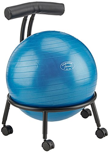 Carnegie Ball Stuhl Bürostuhl Sitzball Lendenwirbelstütze höhenverstellbar