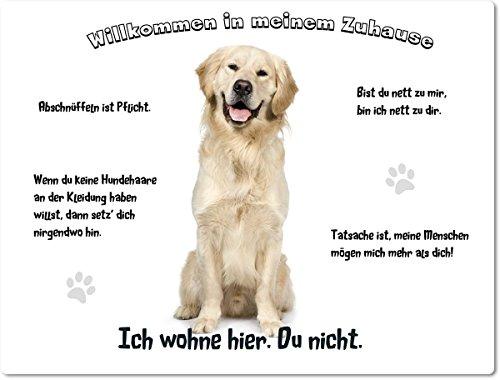 """Blechschild / Warnschild / Fun Türschild 20x30cm - """"Willkommen in meinem Zuhause"""" - Motiv: Golden Retriever / Labrador sitzend -- 01"""