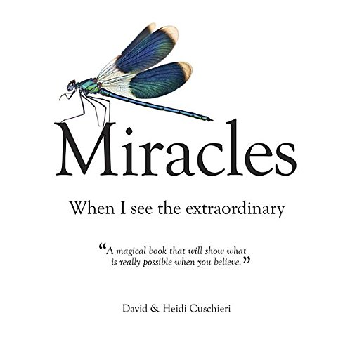 Miracles: When I See the Extraordinary