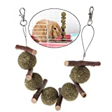 Nankod Pet Teeth Grinding Toys Hamster Squirrel Rabbit Apple Tree Branch Grass Ball Hanging Cage