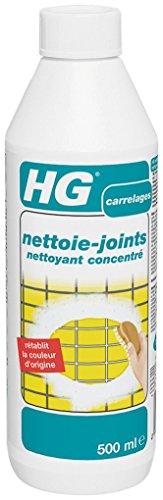 HG Nettoie Joints Nettoyant Concentré 500 ml - Lot de 2