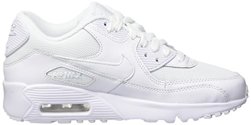 Nike Air Max 90 Mesh (Gs), Baskets Garçon Blanc Cassé (Bianco (White/White)White/White)